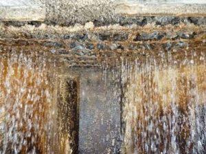 Acqua di una torre evaporativa per ricerca Legionella